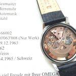 a2772 omega seamaster mit zerti (9)